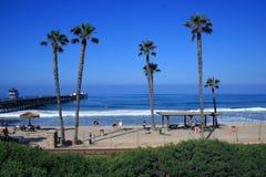 Palme della California fotografia stock