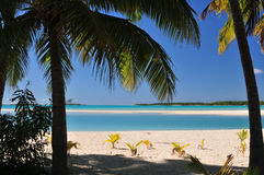 Palme della spiaggia, della sabbia e di Aitutaki Immagini Stock