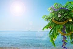 Palme des neuen Jahres mit Dekorationskonzept-Feiertagshintergrund Stockbilder