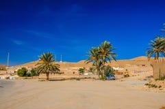 Palme in deserto del Sahara, Tunisia, Nord Africa Fotografia Stock