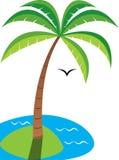 Palme durch das Meer Stockfotos