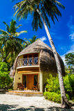 Palme e bungalow della spiaggia, isola di Bandos, Maldive Immagine Stock