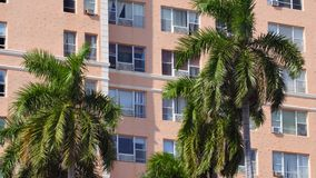 Palme e costruzioni a Miami 4k video d archivio