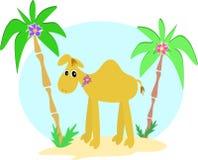 Palme e del cammello Fotografia Stock