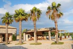 Palme e della villa Fotografia Stock
