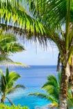 Palme e fronde tropicali di scena, oceano e cielo Fotografia Stock