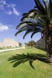 Palme in einem Burggraben in der Rhodos-Stadt, Griechenland Stockfotos
