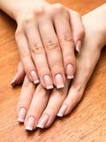 Palme femminili con il manicure Immagini Stock