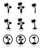 Palme, feste esotiche sulle icone della spiaggia messe Fotografia Stock Libera da Diritti