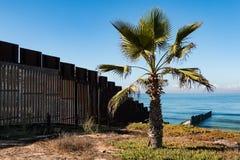 Palme am Grenzfeld-Nationalpark in San Diego Next zur Wand der internationalen Grenze stockfotos