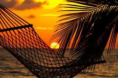 Palme, Hängematte und Sonnenuntergang Stockbilder
