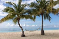 Palme, Hängematte und Strand zum Ozean Stockfotos