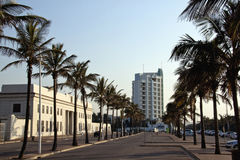 Palme-Linie Marine Parade Outside Natal Command-Hauptsitze Stockfoto