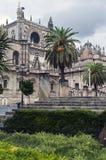 Palme mit Kathedrale Lizenzfreies Stockfoto