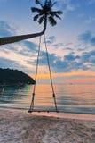 Palme mit Schwingen auf Sonnenunterganghintergrund lizenzfreies stockbild