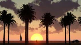 Palme nel tramonto illustrazione di stock