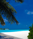 Palme, Sandstrand und Ozeanboote Lizenzfreies Stockbild