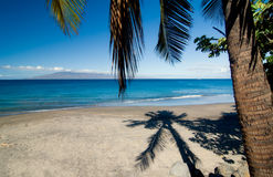 Palme-Schatten auf Strand Lizenzfreies Stockbild