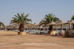 Palme su una spiaggia abbandonata e abbandonata con i lettini, ombrelli fotografia stock libera da diritti