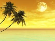 Palme sull'isola contro il tramonto illustrazione di stock