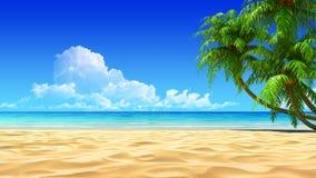 Palme sulla spiaggia tropicale idillica vuota della sabbia Immagini Stock