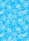 Palme tropicali con struttura afflitta. Immagine Stock