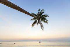 Palme tropicali di tramonto della spiaggia di paradiso Fotografia Stock Libera da Diritti