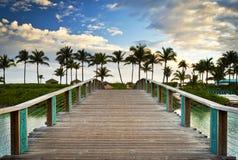 Palme tropicali di vacanza di paradiso della spiaggia dell'oceano Immagine Stock