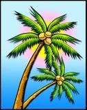 Palme tropicali w/sun Fotografia Stock