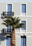 Palme und Art Stockbild