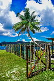 Palme und Bambustor Stockbilder