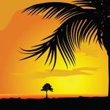 Palme und Baum in dsert Illustration Lizenzfreie Stockfotos