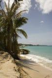 Palme und Boot 1 Stockbilder
