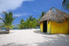 Palme und gelber Cabana Stockfoto