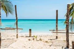 Palme und Hängematte auf Sansibar setzen mit blauem Himmel und Ozean auf dem Hintergrund auf den Strand lizenzfreie stockfotografie