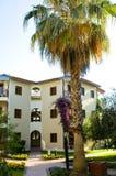 Palme und Haus Stockfoto