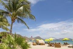 Palme und Regenschirme auf Strand lizenzfreies stockfoto
