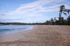 Palme und tropischer Strand, Dominikanische Republik stockbild