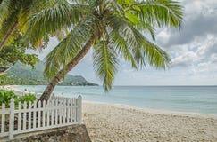 Palme verdi e un recinto bianco alla spiaggia ed alle colline verdi Immagini Stock Libere da Diritti