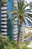 Palme vor einem Luxusgebäude Lizenzfreies Stockbild