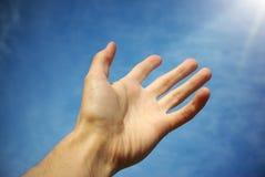 Palme zum Himmel Lizenzfreies Stockbild