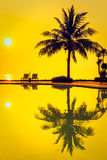 Palmeira do coco da silhueta com piscina Imagem de Stock Royalty Free