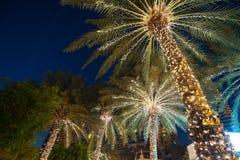 Palmeira do fundo da decoração do Natal Foto de Stock