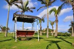 Palmeira e balanço Foto de Stock Royalty Free