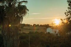 Palmeira e casa de campo no por do sol em uma fazenda fotos de stock royalty free
