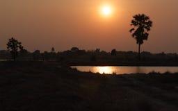 Palmeira e lagoa do açúcar da silhueta com por do sol Foto de Stock