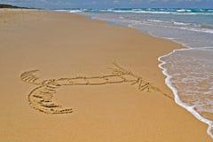 Palmeira na areia fotografia de stock