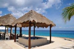 Palmeira na praia perfeita tropical Fotos de Stock Royalty Free