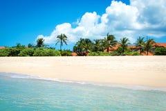 Palmeiras bonitas sobre a praia branca da areia em Imagens de Stock Royalty Free