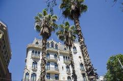 Palmeiras contra um céu azul e uma construção com as nuvens finas em Barcelona, Espanha Dia ensolarado azul bonito Palma da árvor Fotos de Stock Royalty Free